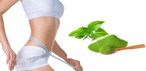 Phương pháp giảm cân bằng bột trà xanh - Điêu Khắc Body Sline
